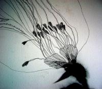 30_peninsule-noire-fleurblog.jpg